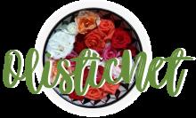 Olisticnet logo